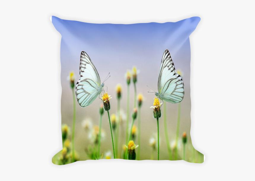 Butterfly Pillow, Throw Pillow, Decorative Pillow, - Pillow Printing Design Png, Transparent Png, Free Download