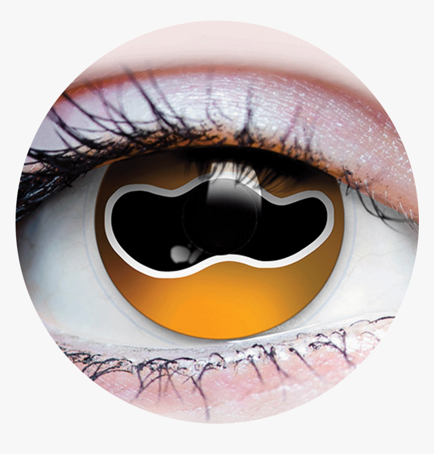 """Primal® Cuttlefish""""  Class= - Primal Costume Contact Lenses Yellow, HD Png Download, Free Download"""
