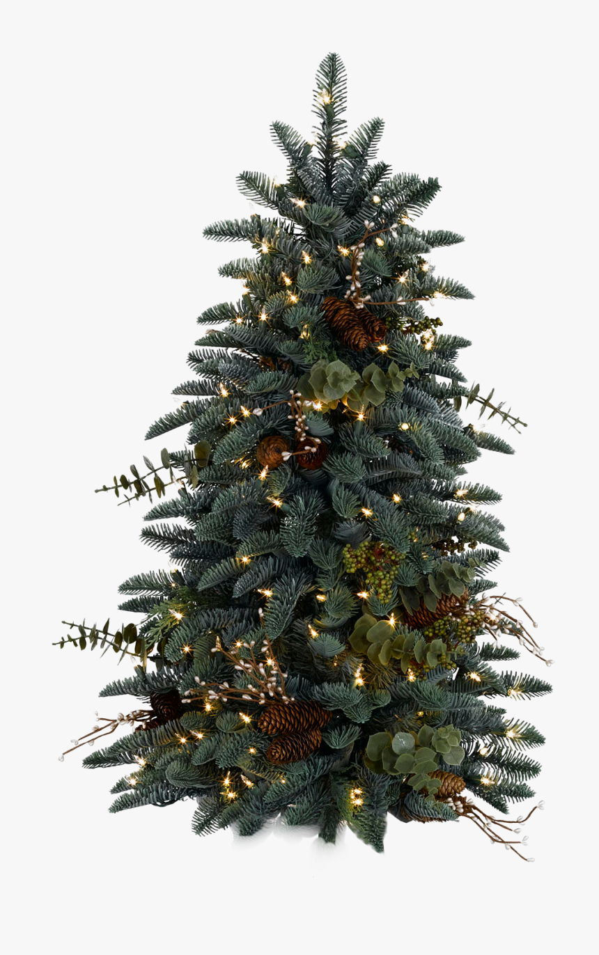 Christmas Tree Png Real, Transparent Png, Free Download