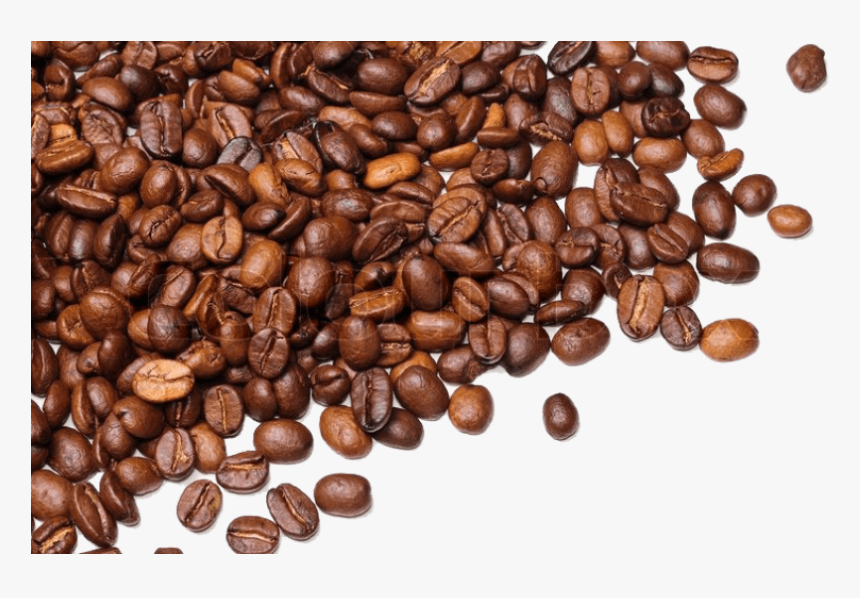 Coffee Beans Transparent Background - Transparent Background Coffee Beans Png, Png Download, Free Download