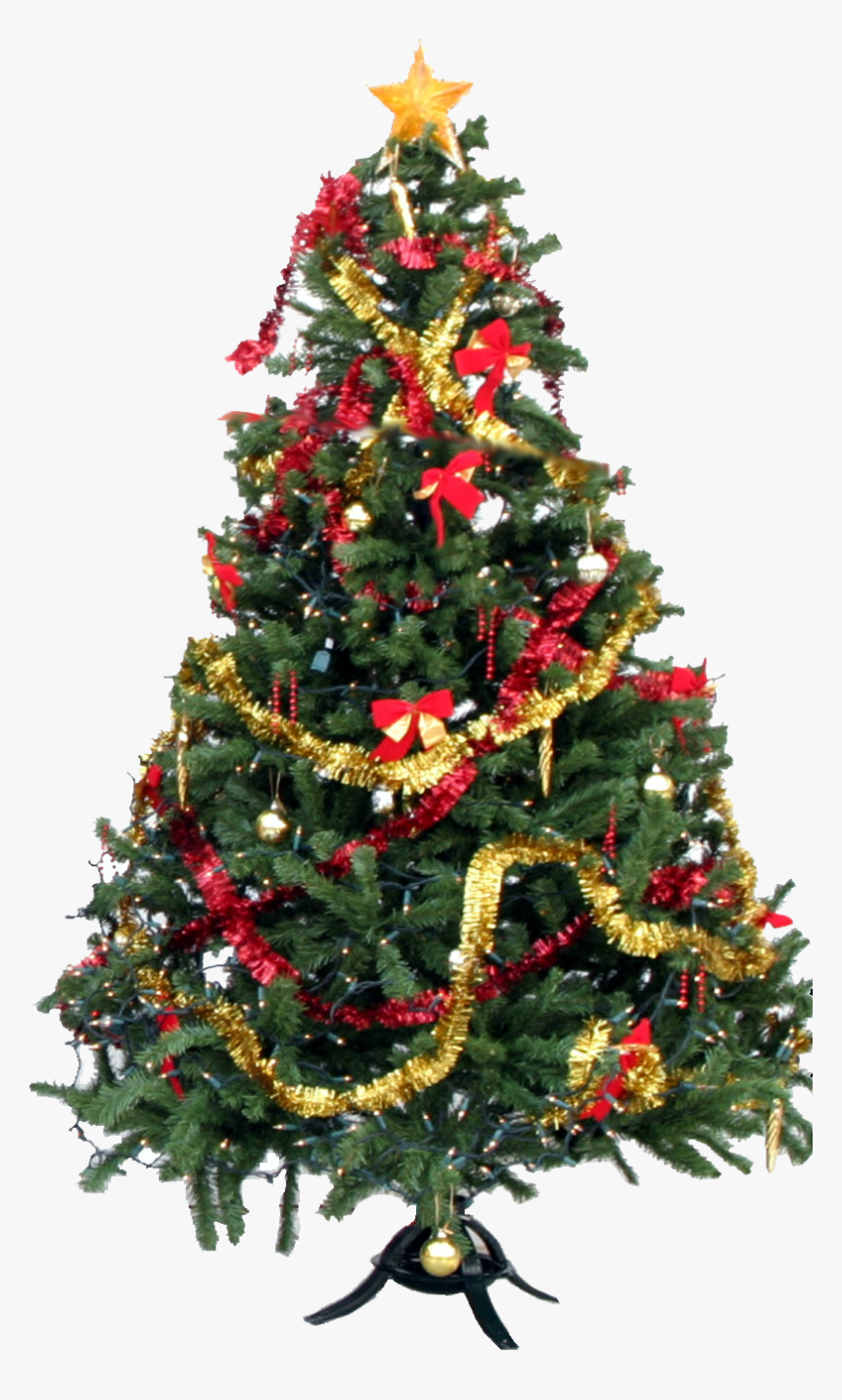 25 December Christmas Day, HD Png Download, Free Download