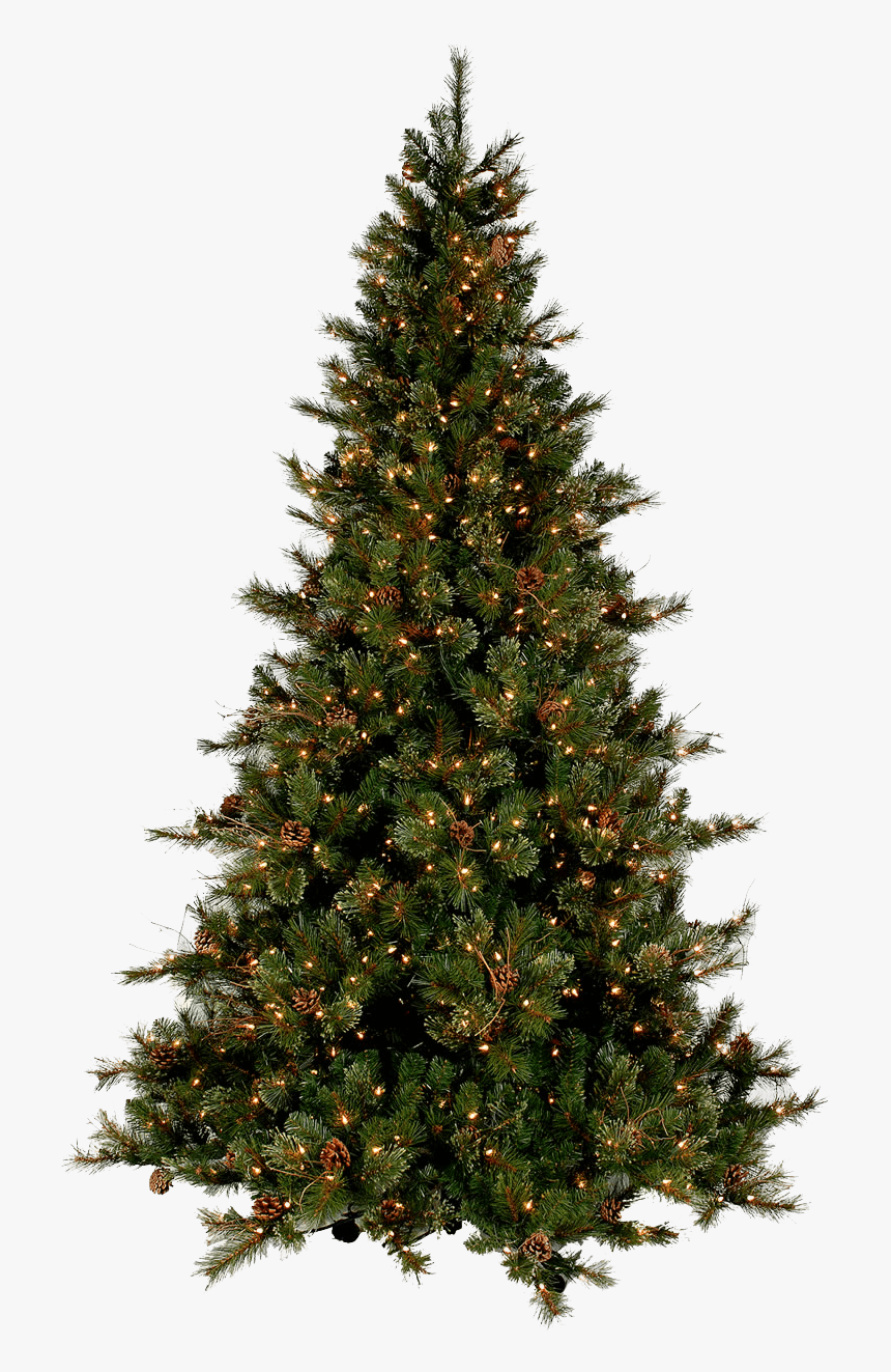 Christmas Tree Modern - Real Christmas Tree Png, Transparent Png, Free Download