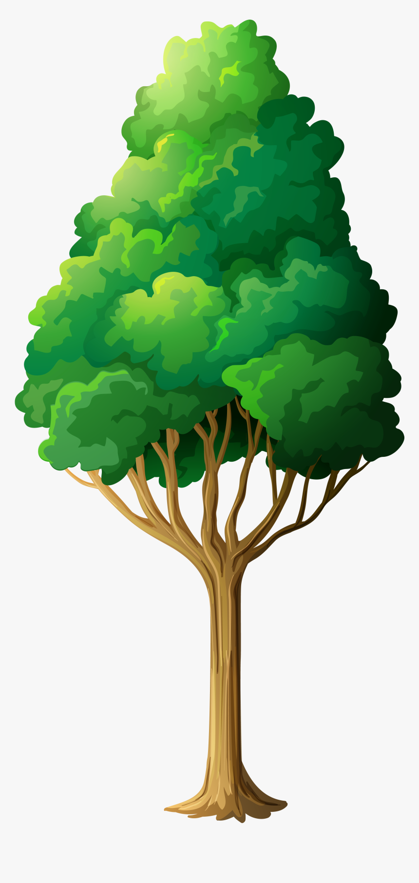 Tree Clipart - Frog Under The Tree, HD Png Download, Free Download