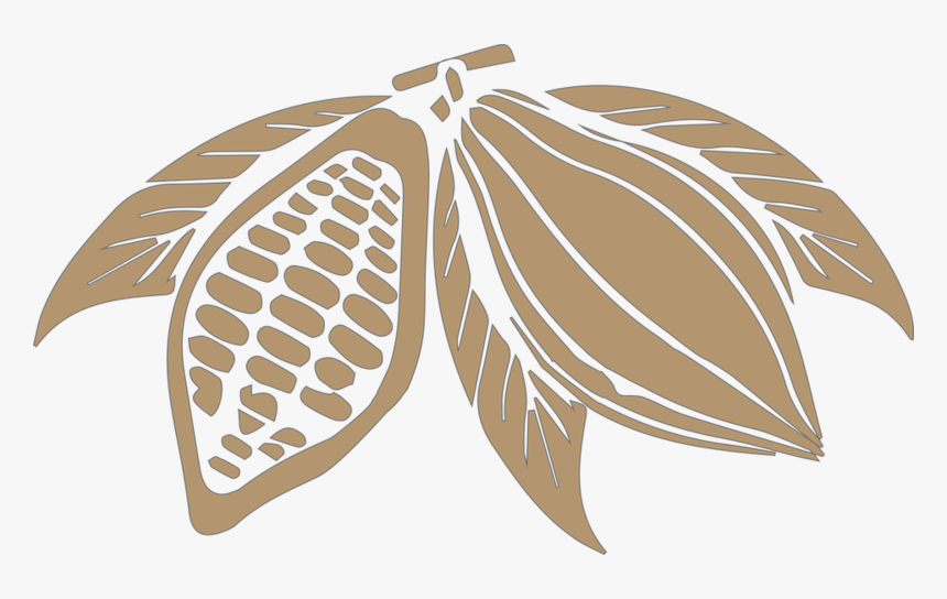 Cocoa Beans Png Transparent Image - Cocoa Bean Png, Png Download, Free Download