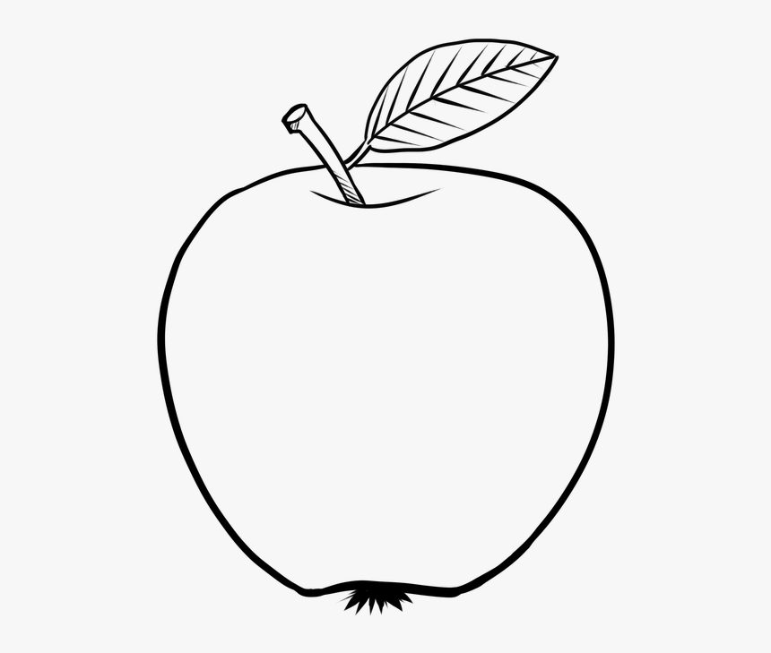 Figure Apple Lineart The Stroke Black And White Apple Line Art Png Transparent Png Kindpng