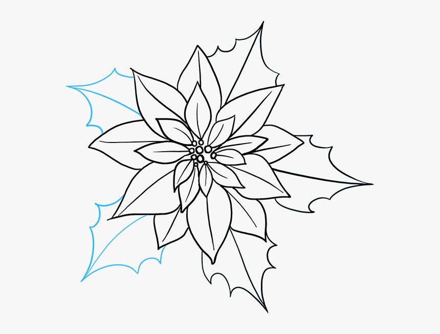 How To Draw Poinsettia - Poinsettia How To Draw, HD Png Download, Free Download
