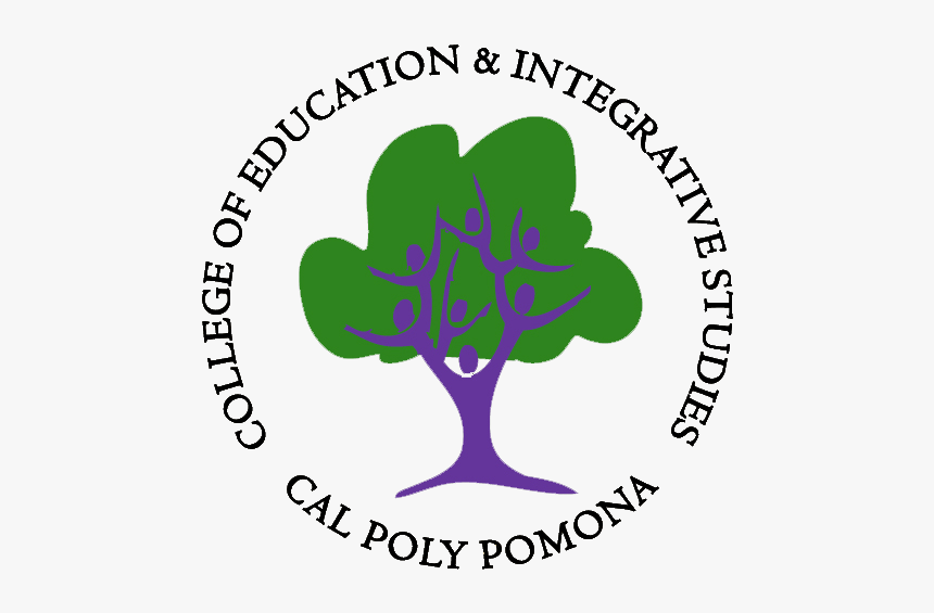 College Of Education And Interactive Studies - Tree, HD Png Download, Free Download