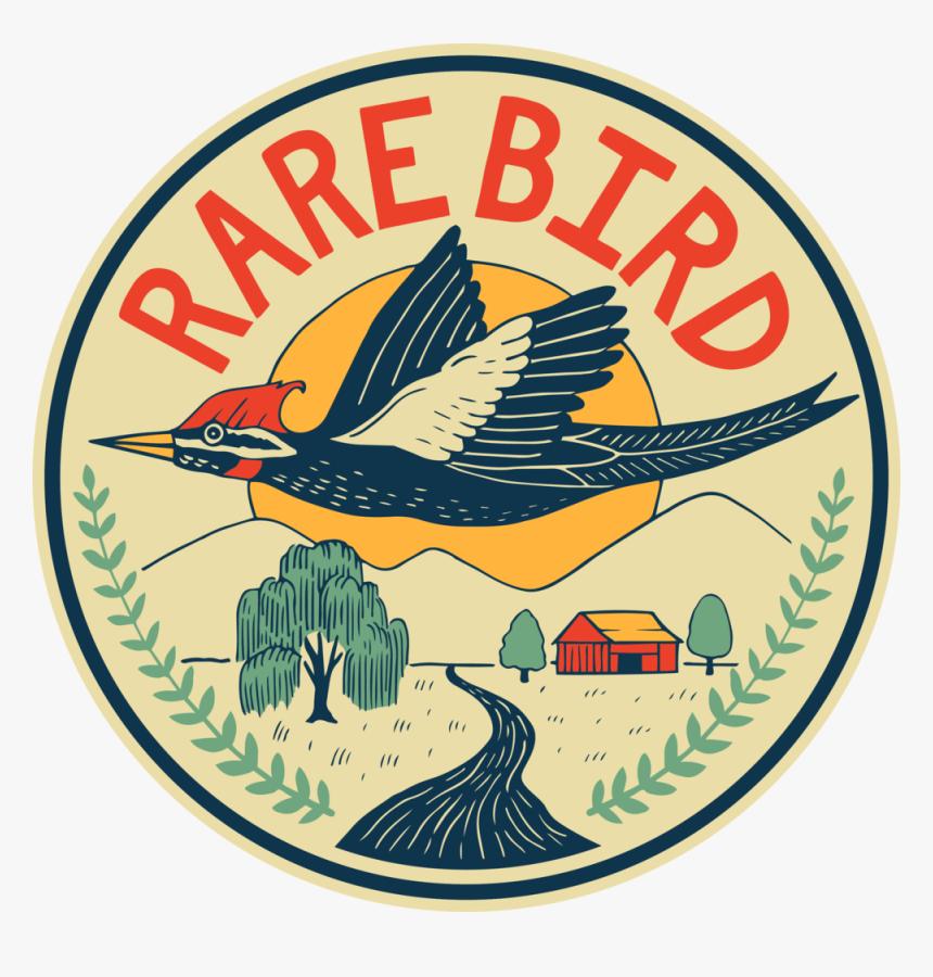Rarebird Color Circle, HD Png Download, Free Download