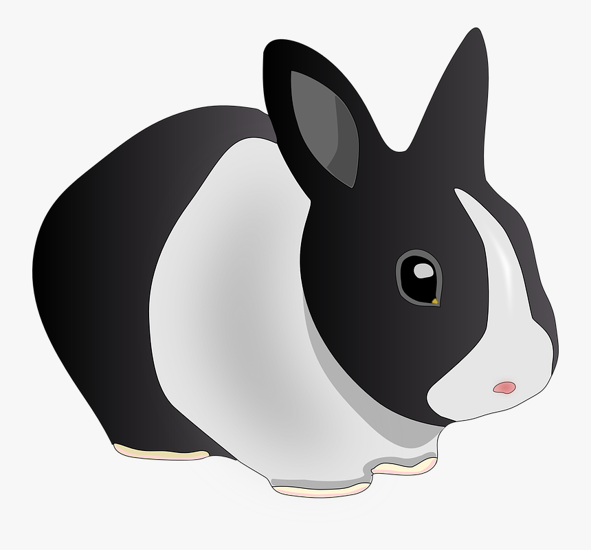Rabbit, Animal, Black And White, Bunny, Pet, Ears - Rabbit Clip Art, HD Png Download, Free Download