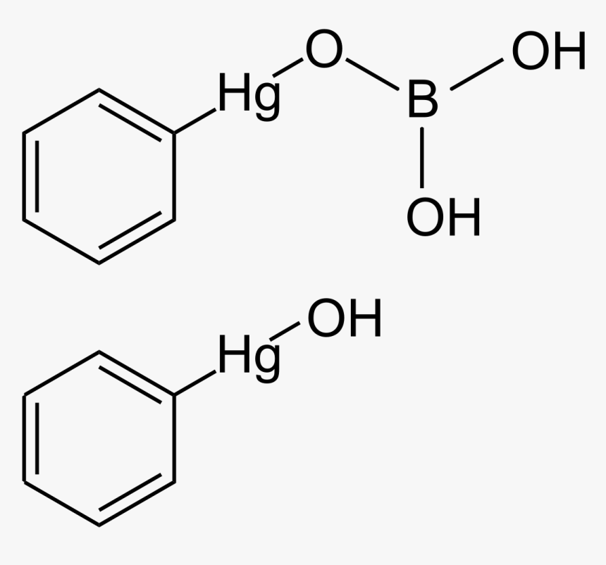1 '- Acetoxychavicol Acetate, HD Png Download, Free Download