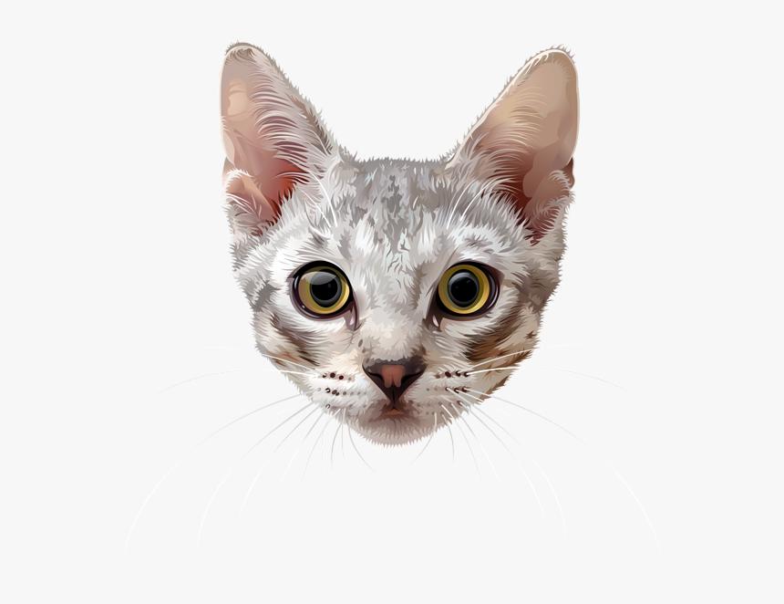 Cat Face Png - Transparent Background Cat Face Transparent, Png Download, Free Download