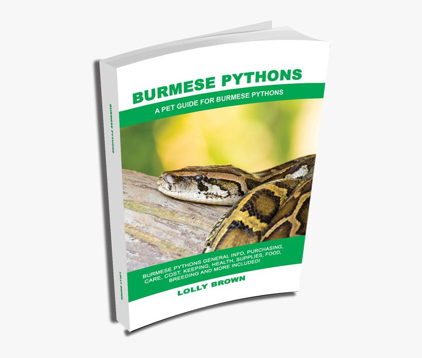 , More Books, Ball Pythons As Pets - Burmese Python, HD Png Download, Free Download