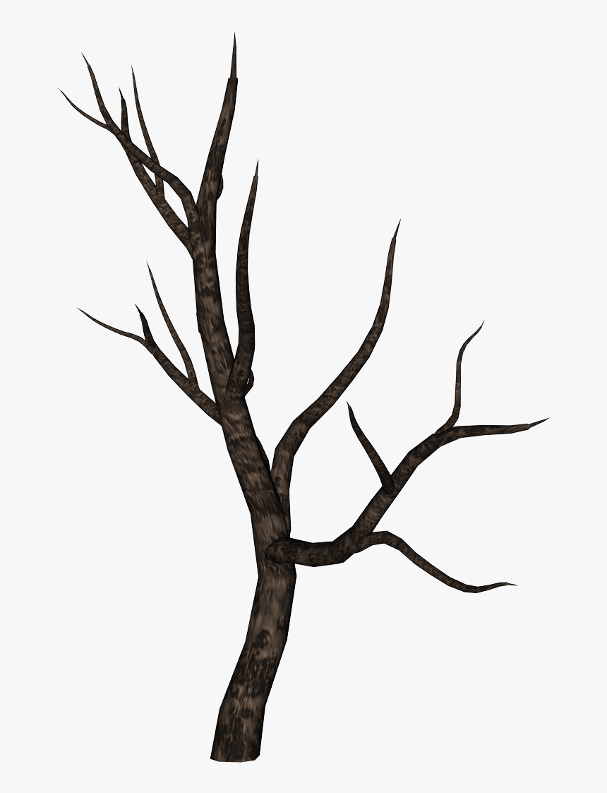 Stick Clipart Bare Branch - Tree Branch Png, Transparent Png, Free Download