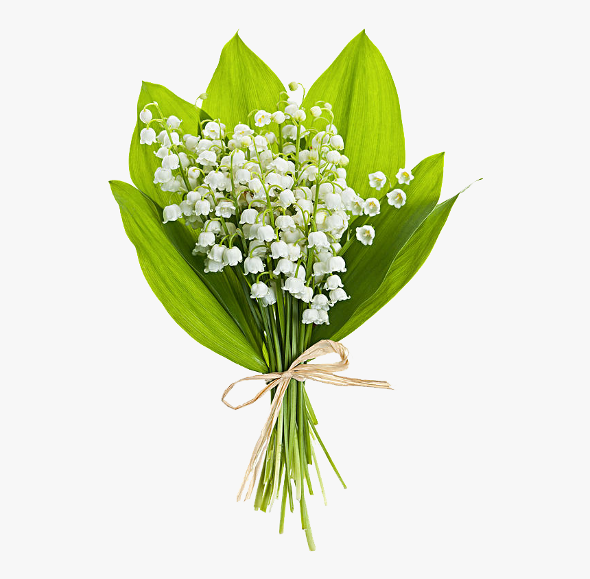 Clip Art Lily Of The Valley Bouquet - Happy Birthday Flowers Lily Of The Valley, HD Png Download, Free Download