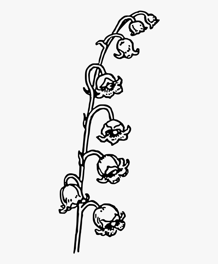 Lily Of The Valley - Black And White Lily Of The Valley Clipart, HD Png Download, Free Download