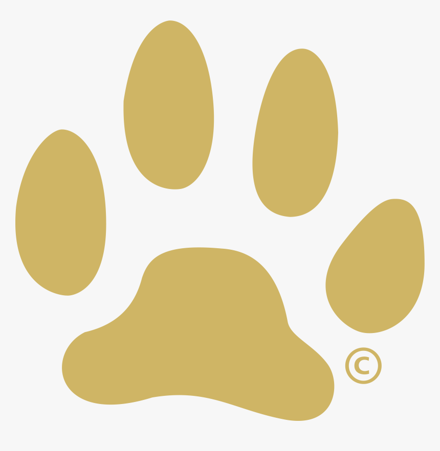 White Dog Paw Png Gold Paw Print Png Transparent Png Kindpng Paw paw prints dog cat animal pet print footprint pawprint. white dog paw png gold paw print png