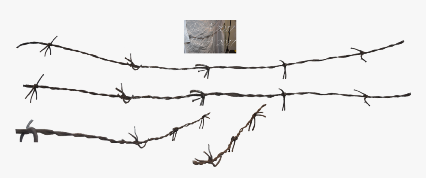 Barbed Wire Fence Chain-link Fencing - Barbed Wire Wire Png, Transparent Png, Free Download