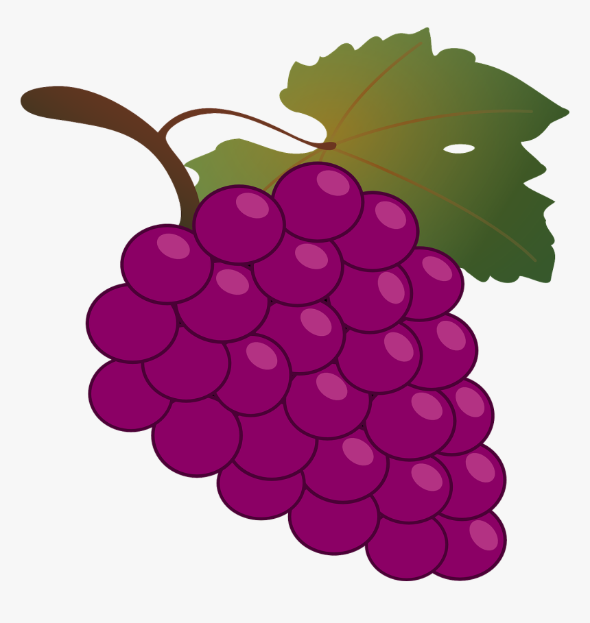 Grapes Clipart, HD Png Download, Free Download
