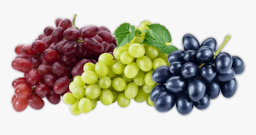 Grapes Fruit, HD Png Download, Free Download