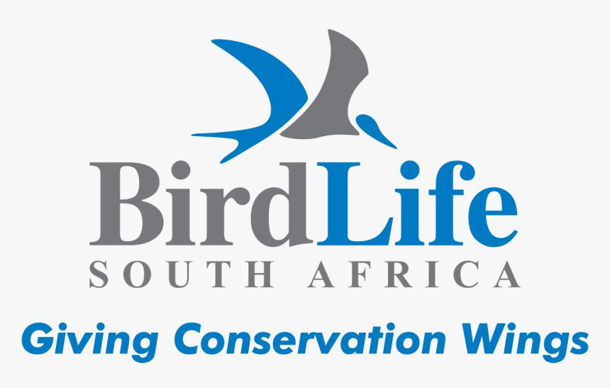 Birdlife South Africa - Birdlife South Africa Logo, HD Png Download, Free Download