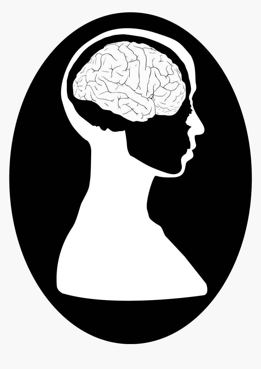 Transparent Brains Png - Brain And Head Drawing, Png Download, Free Download