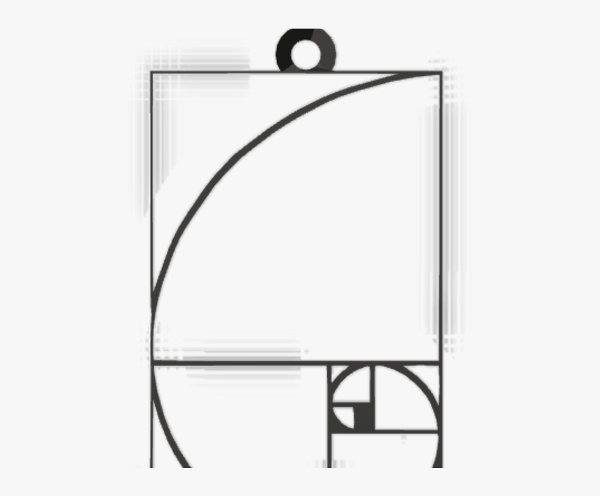 Fibonacci Sequence In Nature , Png Download - Fibonacci Sequence In Nature, Transparent Png, Free Download