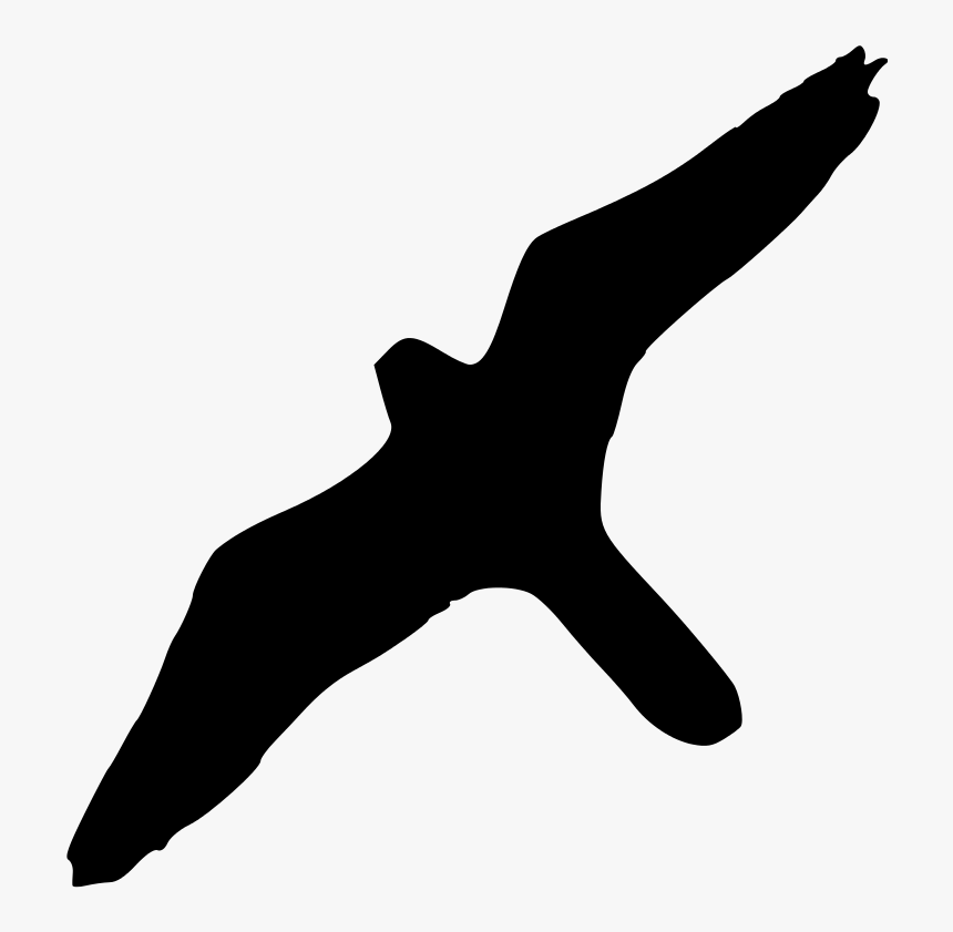 Peregrine Falcon Bird Of Prey Silhouette - Albatross Bird Clipart Transparent Background, HD Png Download, Free Download
