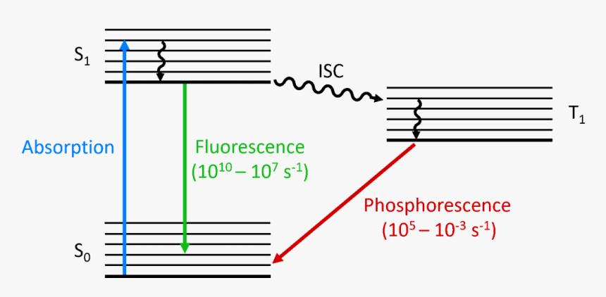 Jablonski Diagram - Fluorescence And Phosphorescence Diagram, HD Png Download, Free Download