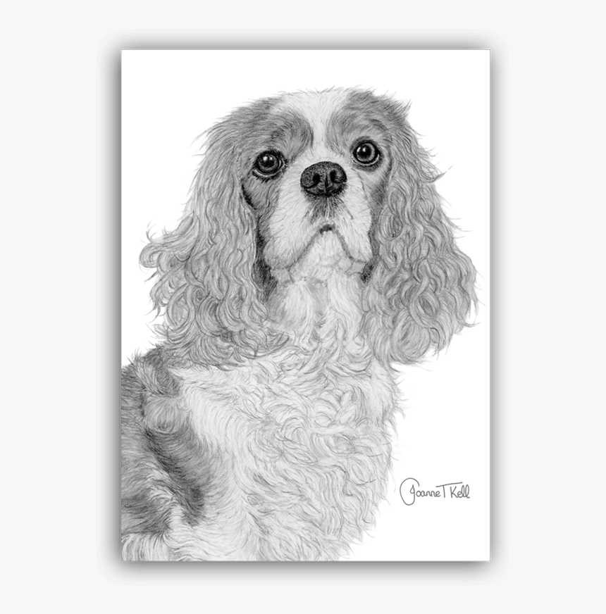 Transparent Blank Greeting Card Png - Cocker Spaniel, Png Download, Free Download