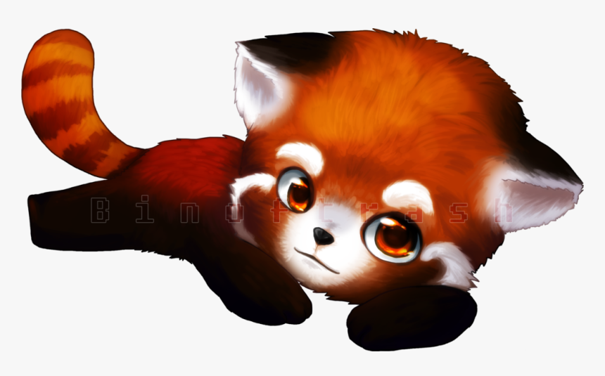 Download Red Panda Png Clipart Cute Pictures Of Baby Red Pandas Transparent Png Kindpng