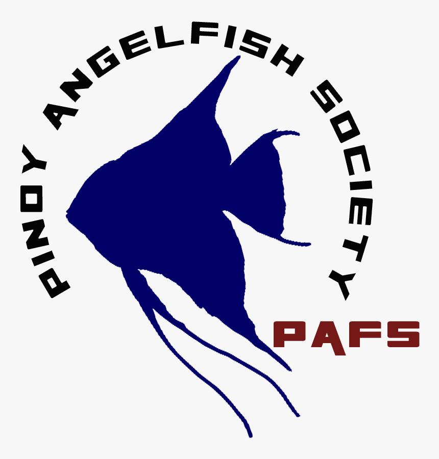 Angelfish, HD Png Download, Free Download