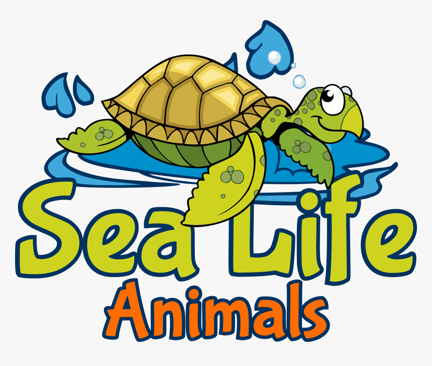 Clipart Turtle Sea Life, HD Png Download, Free Download
