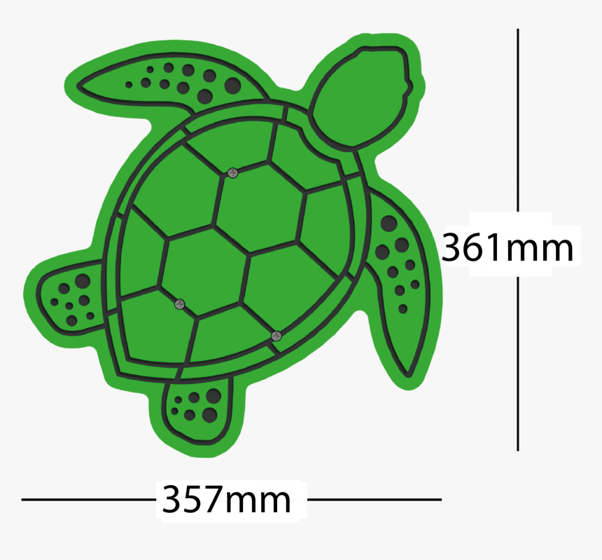 Transparent Turtle - Kemp's Ridley Sea Turtle, HD Png Download, Free Download