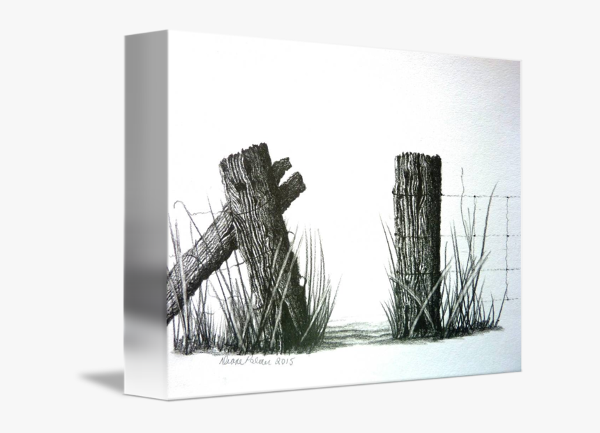 Farm Drawing T Churl - Fence Post Barbed Wire Ink Drawing, HD Png Download, Free Download