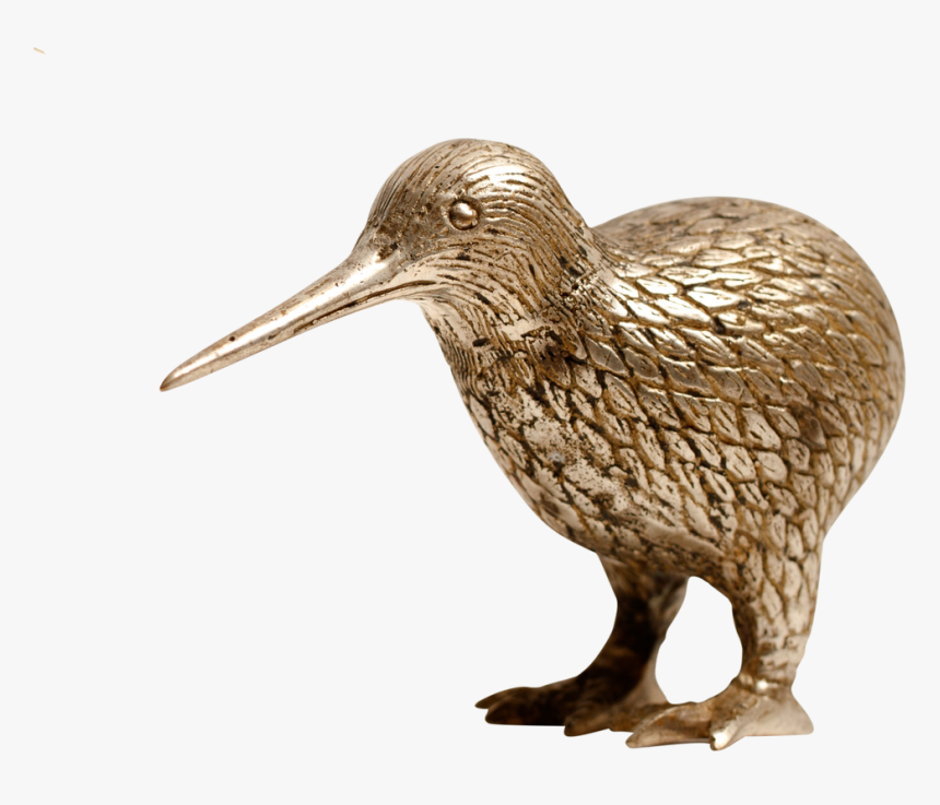 Transparent Kiwi Bird Png - Dowitcher, Png Download, Free Download