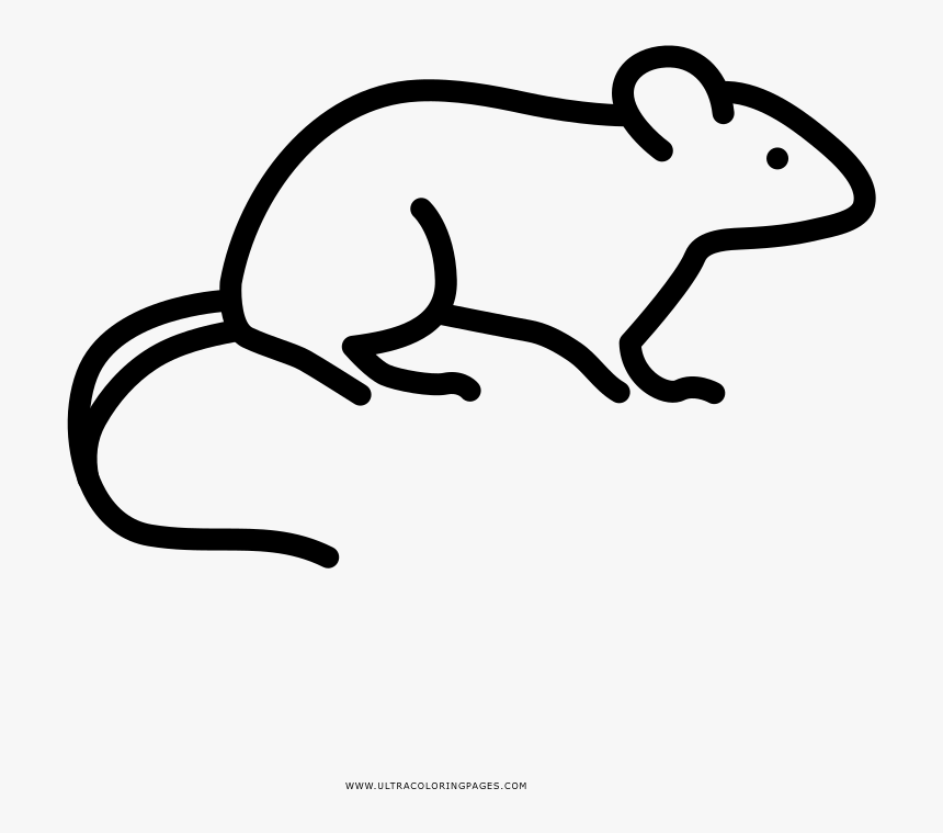 Rat Coloring Page Rat Coloring Page Coloring Page Mouse Rat ...   759x860