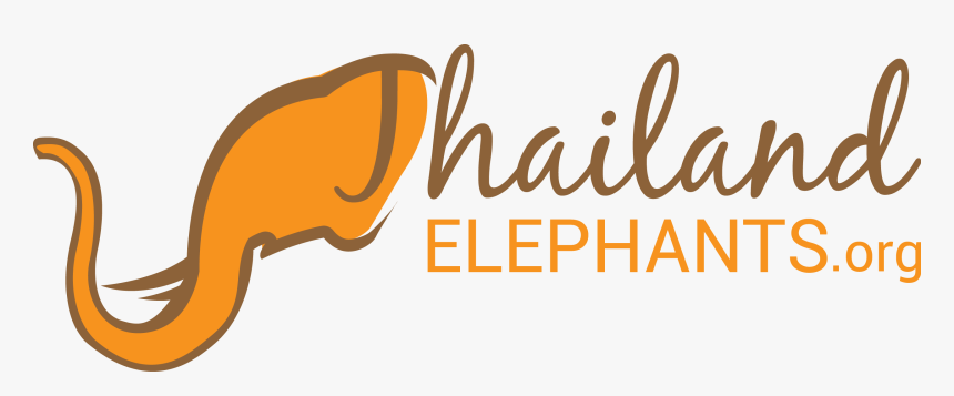 One Boy Thousand Feelings Png Clipart , Png Download - Tourism Elephant Logo, Transparent Png, Free Download