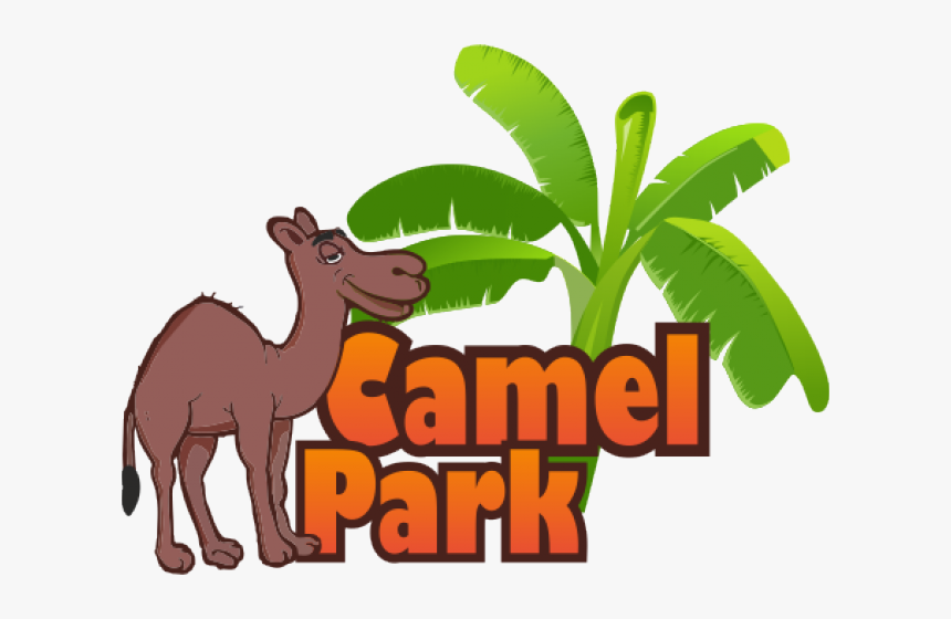 Transparent Camels Clipart - Camel Park Tenerife Logo, HD Png Download, Free Download
