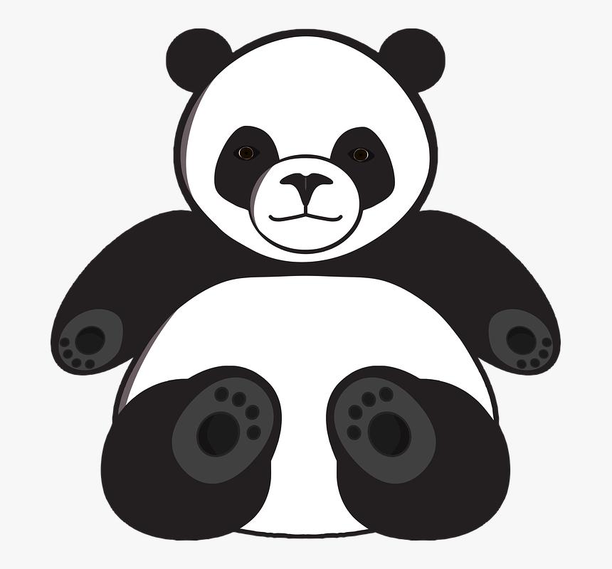 Panda Disegno Da Colorare Hd Png Download Kindpng