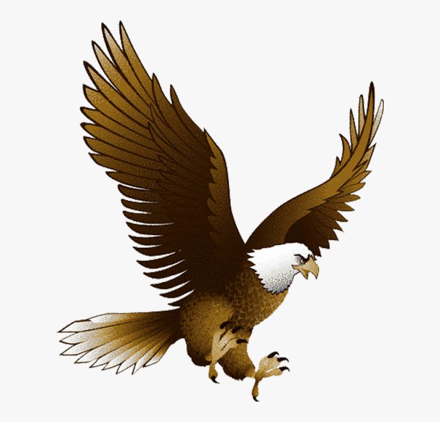 Patriotic Bald Eagle Image Png Clipart - Eagle Png, Transparent Png, Free Download