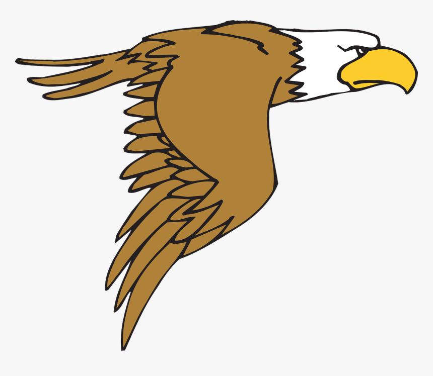 Bald Eagle Cartoon Png, Transparent Png, Free Download