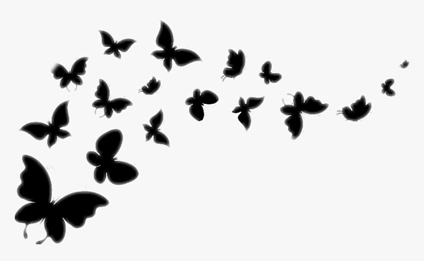 Transparent Butterfly Flying Clipart Black And White - Flying Butterflies Black And White, HD Png Download, Free Download