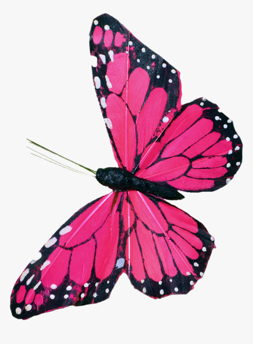 Pink Butterfly Clip Art - Butterfly Pic Hd Psd File, HD Png Download, Free Download