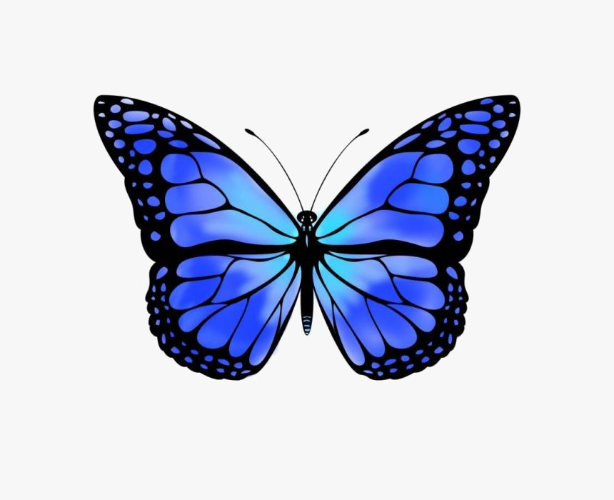 Blue Butterfly Free Png Image - Monarch Butterfly Clipart, Transparent Png, Free Download