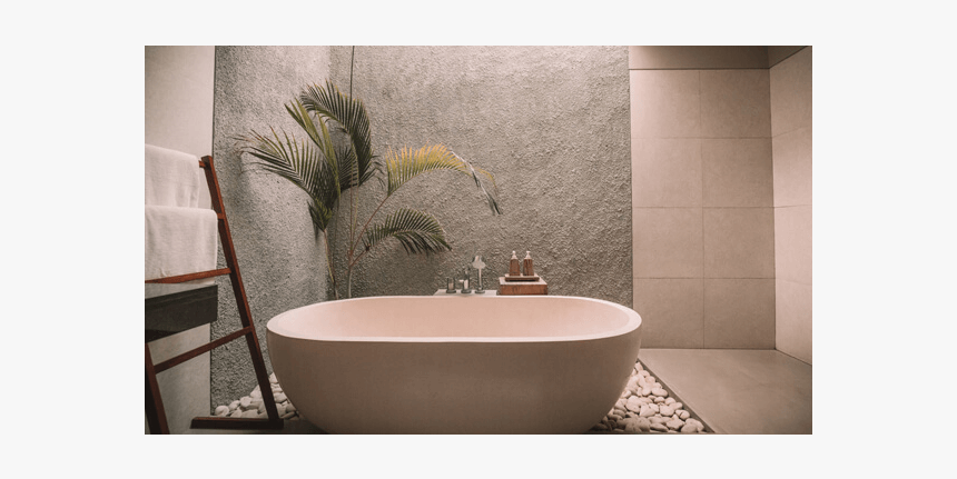Plants For The Bathroom Creative Unique Interior Decoration Hd Png Download Kindpng
