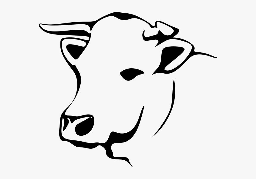 Transparent Cows Clipart - Line Art Cow Png, Png Download, Free Download