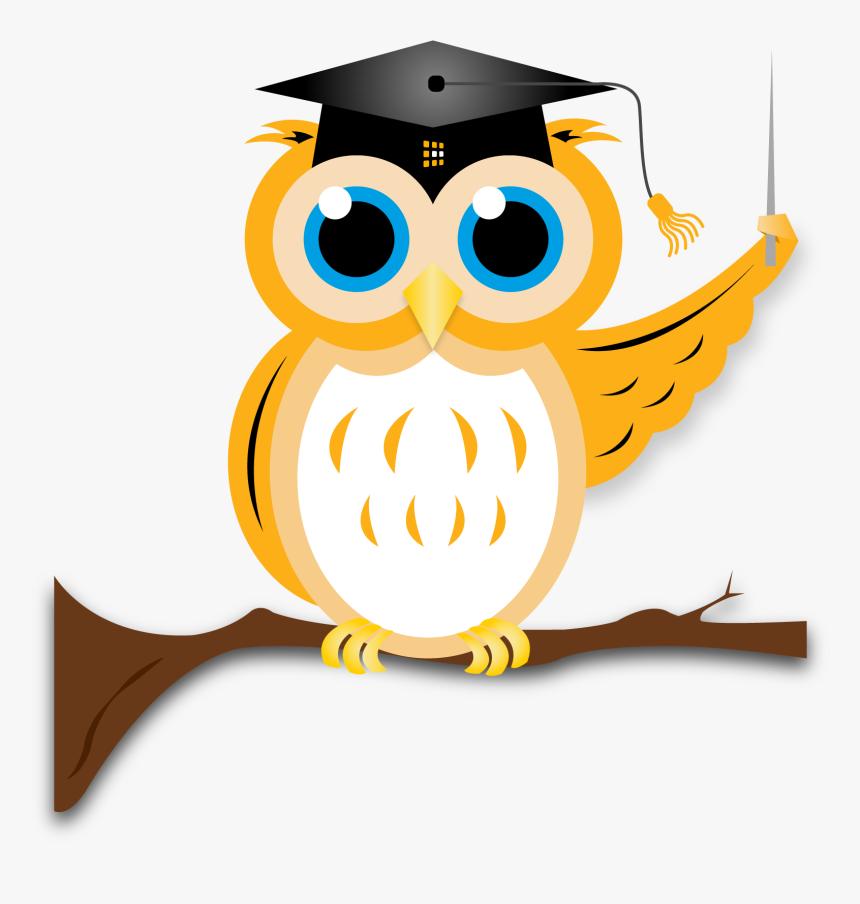 Transparent Png Owl - Owl Graduation Transparent Png, Png Download, Free Download