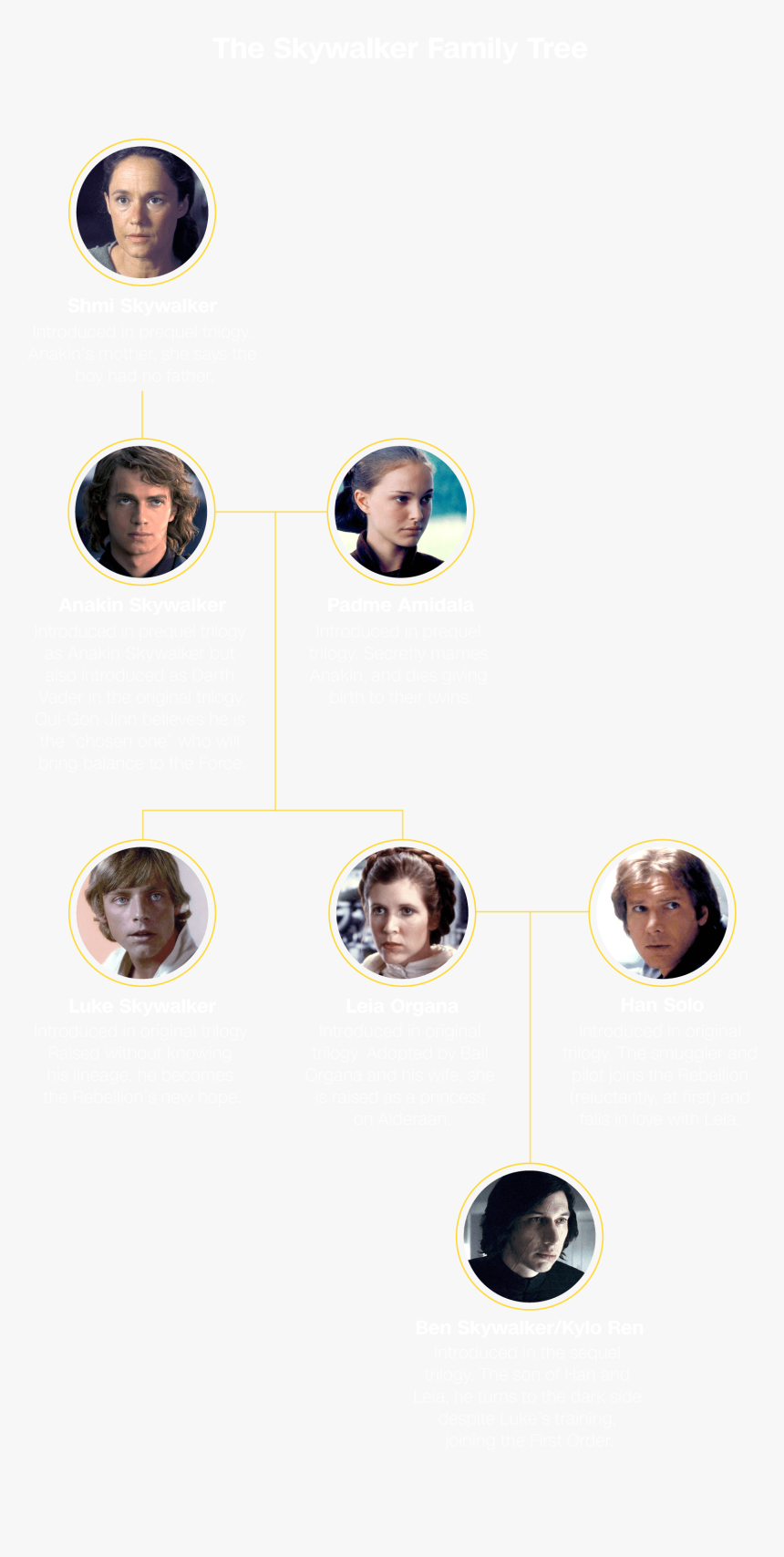 Rise Of The Skywalker Hero Image - Star Wars Family Tree Rise Of Skywalker, HD Png Download, Free Download