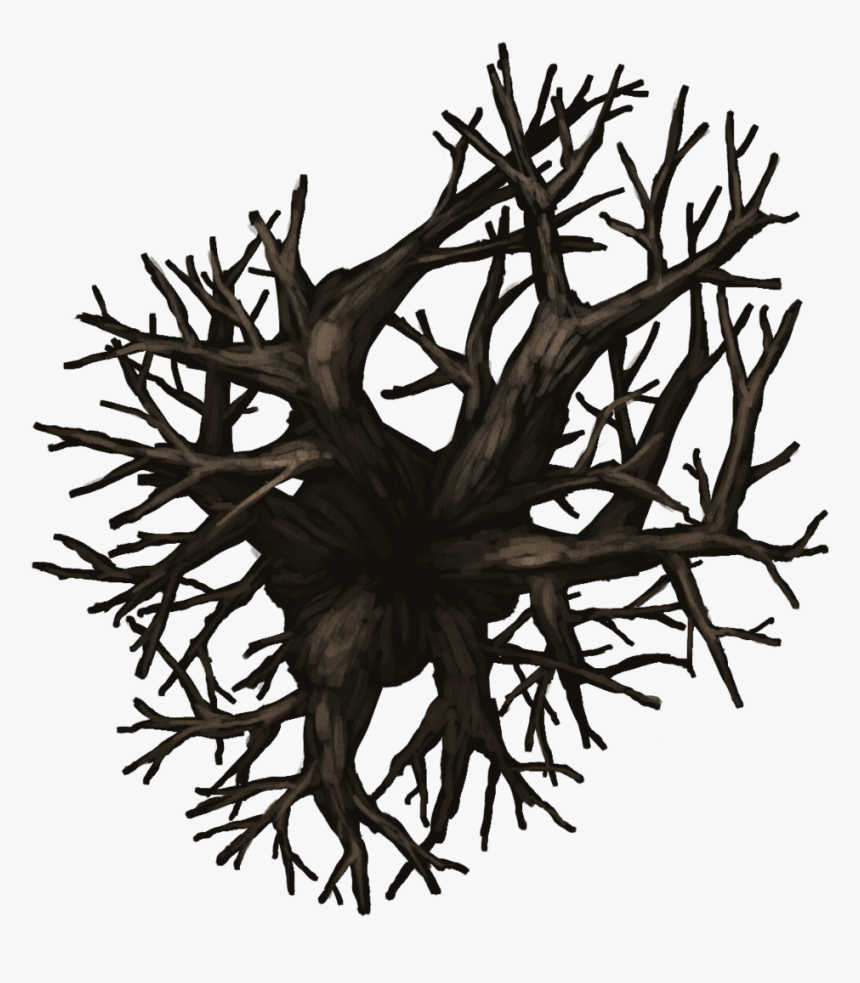 Np04 Treedecid 45x40[nature, Evil Tree, Tree, Leafless, HD Png Download, Free Download