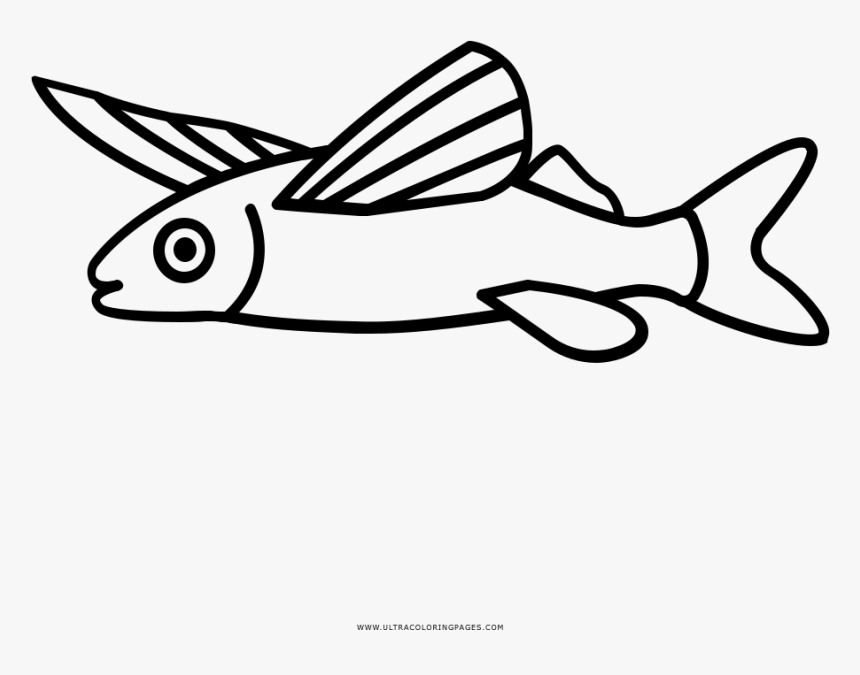 Flying Fish Coloring Page - Line Art, HD Png Download, Free Download